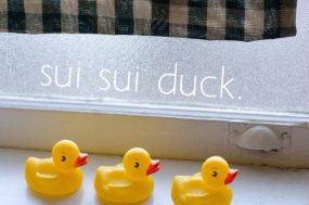 sui_sui_duck-a